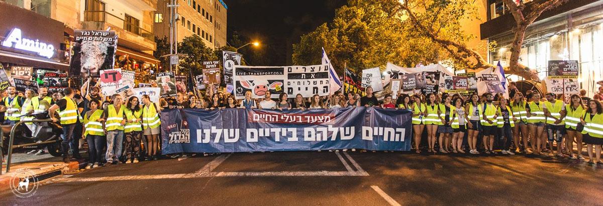הפגנה נגד משלוחים חיים 2017