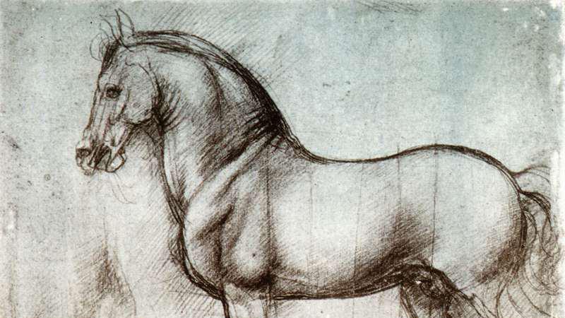 horse-study-leonardo-de-vinci